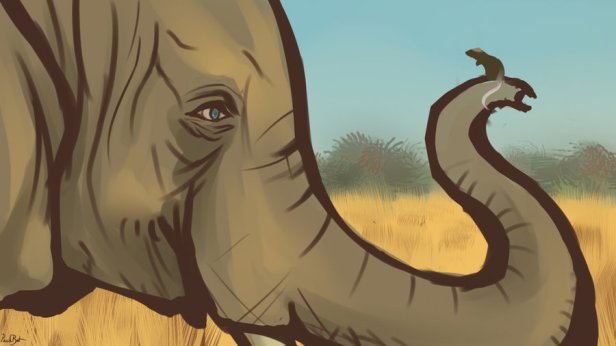 the_elephant_and_the_mouse_by_packrattheartist-d87p918